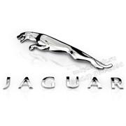 Надпись Ягуар на багажник